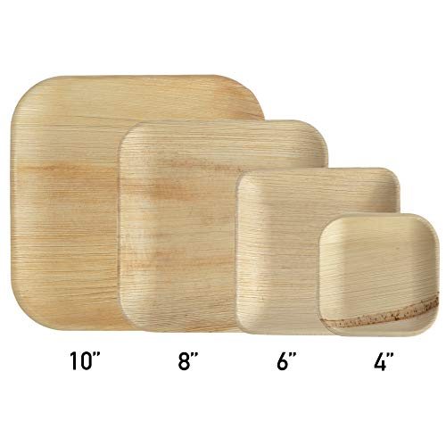 Bamboo Plate Best Offers Overview Buy Bamboo Online